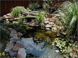 unique small backyard ponds inspiration