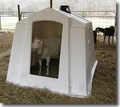 Plastic Calf Hutches Bonnie Blue Farm Misc For Sale