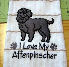 affenpinscher texas 25 best for the love of affenpinschers images on pinterest