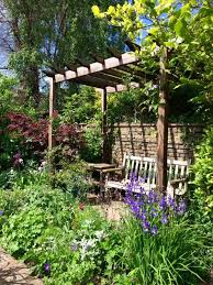 Landscaping Ideas For Privacy Best 25 Garden Screening Ideas On Pinterest Garden Privacy