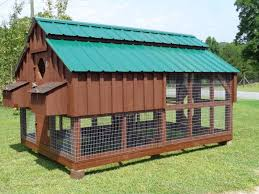 how to build a backyard chicken coop ebay