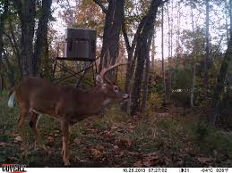 plastic shooting houses plastic deer stands plastic deer blinds