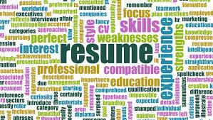 www sample resume sample resume cv for israel nefesh b nefesh sample resume