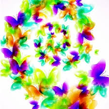 colorful butterfly border design free vector 28 325 free