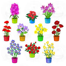 fall flowers for wedding potted flowers for wedding iimajackrussell garages best potted