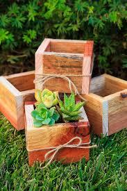 succulent centerpieces picmia