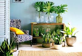 home decor websites india plant decorations home home decor websites india drinkinggames me