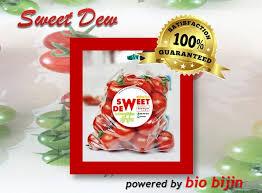 cuisine bio มะเข อเทศ สว ทด ว powered by bio bijin size l พ นธ ทว มอลล
