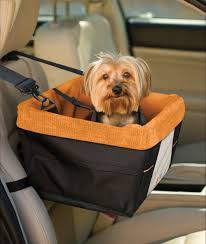 The latest in dog travel essentials from global pet expo