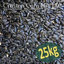 sunflower seeds for birds amazon co uk