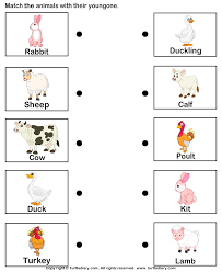 farm animals and their babies worksheet turtle diary