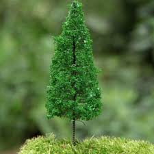miniature pine trees miniature pine trees for sale