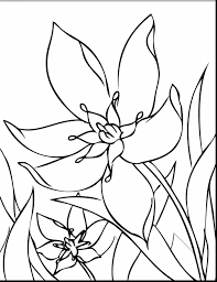 terrific spring flower coloring pages with spring coloring page