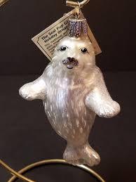 best 25 white seal ideas on baby harp seal harp seal