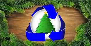 novi u0026 northville u0027s christmas tree recycling programs jamey