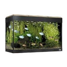 Fluval 125 Cabinet Fluval Roma 125 Aquarium On Sale Free Uk Delivery