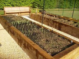 raised vegetable garden bed construction steel fruit cage