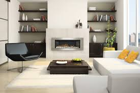 fireplace magnificent napoleon fireplaces for indoor fireplace