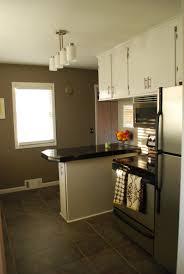 fancy kitchen on a budget u2014part ii