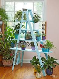 Wooden Ladder Bookshelf Plans by Best 25 Wooden Ladder Shelf Ideas On Pinterest Old Ladder Shelf