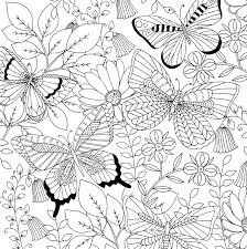 follow your dreams coloring book 31 stress relieving