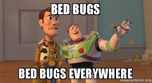 Bed Bug Meme - bed bugs bed bugs everywhere buzz and woody toy story meme