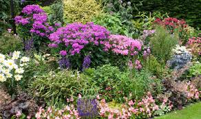 Garden Border Ideas Uk Alan Titchmarsh Your Beds And Borders Seen Better Days