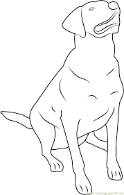 labrador retriever coloring page free dog coloring pages