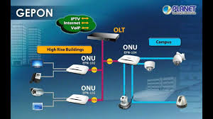 solution manual optical network