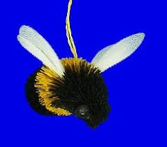 37 best bumble bee bwuzz images on bumble bees