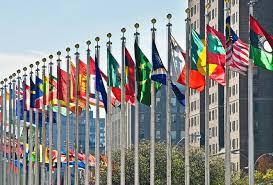 si e onu l onu organizzazione nazioni unite venividivici