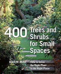 400 trees and shrubs for small spaces diana miller 9780881928754