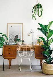 mid century indoor planters garden trends