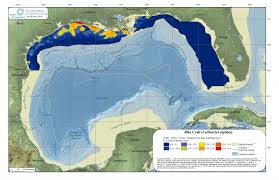 map of the gulf of mexico the gulf of mexico ecosystem there s a map for that