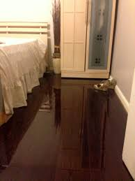 Walnut Laminate Flooring Chocolate Walnut Our Most Versatile Colour Floorless Floors