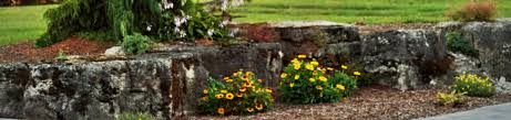 Ready For Spring by How To Get Your Yard Ready For Spring Spring Cleaning Your Yard