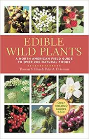 edible photo edible plants a american field guide to 200