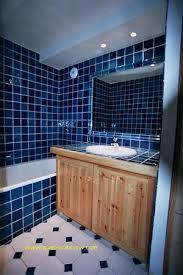 carreler une cuisine carreler sur du bois marin pour carrelage salle de bain nouveau