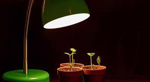 proper lights for growing weed the best light for growing weed in 2018 greenbudguru
