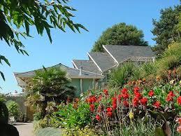 Ventnor Botanic Gardens Ventnorbotanicgarden Hottestgarden