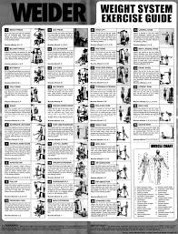 Bench Press Program Chart Best 25 Gym Workout Chart Ideas On Pinterest Gym Leg Press