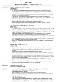 auditor resume exles operations auditor resume sles velvet