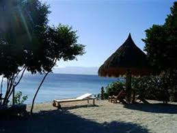 House Beach by Guesthouse Sea Turtle House Moalboal Philippines Booking Com
