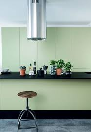 green and black kitchen in a danish home filled with plants