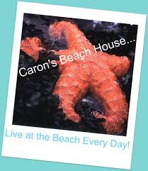 everything coastal woo hoo we are the featured story on