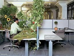 office worker at desk covered in plants rear view stock photo