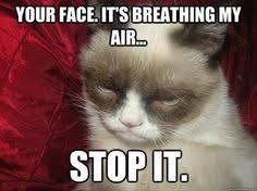 My Ears Are Bleeding Meme - i enjoy the ear bleeding funny pinterest grumpy cat grumpy