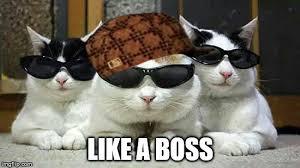 Like A Boss Meme - like a boss imgflip