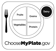 coloring download healthy plate coloring page healthy plate