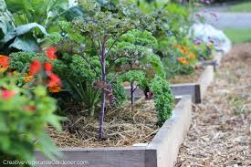 Creative Vegetable Gardens by Creative Vegetable Gardener Gardening Doesn U0027t Have To Be Difficult